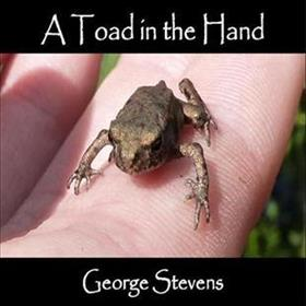 George Stevens - A Toad In The Hand
