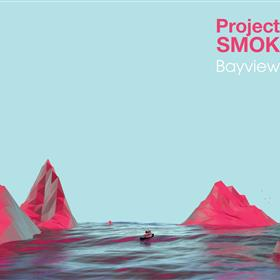 Project SMOK - Bayview