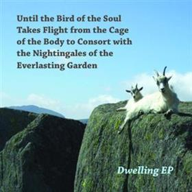 Until The Bird... - Dwelling