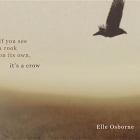 Elle Osborne - If You See a Rook on Its Own, It's a Crow