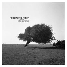 Bird In The Belly - The Crowing