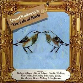 David Rotheray - The Life Of Birds