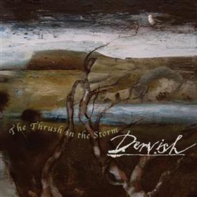 Dervish - The Thrush in the Storm