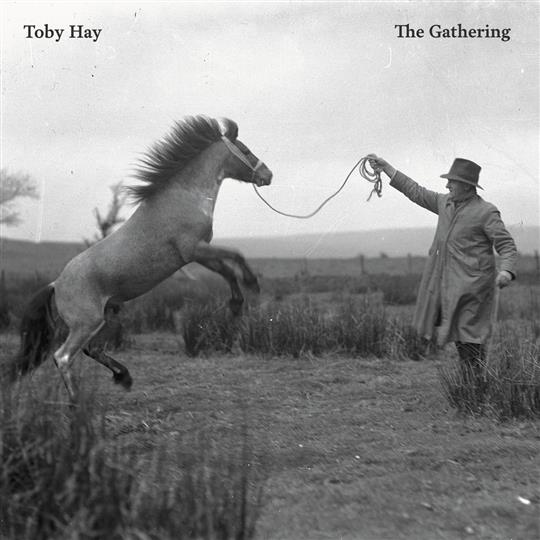 The Gathering - Toby Hay
