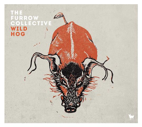 Wild Hog - The Furrow Collective